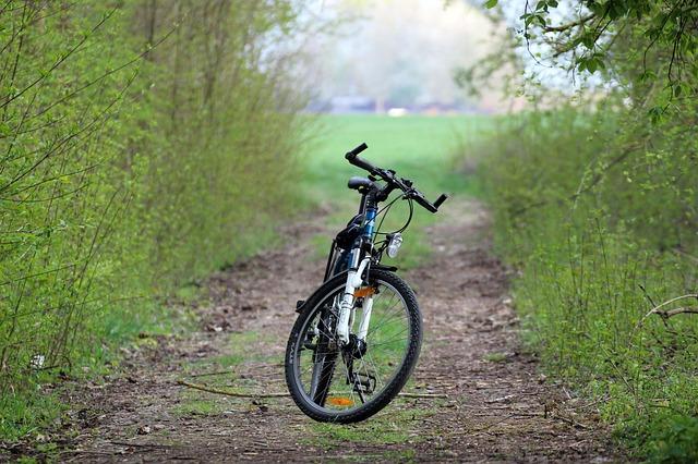 Rower elektryczny a zdrowy tryb życia